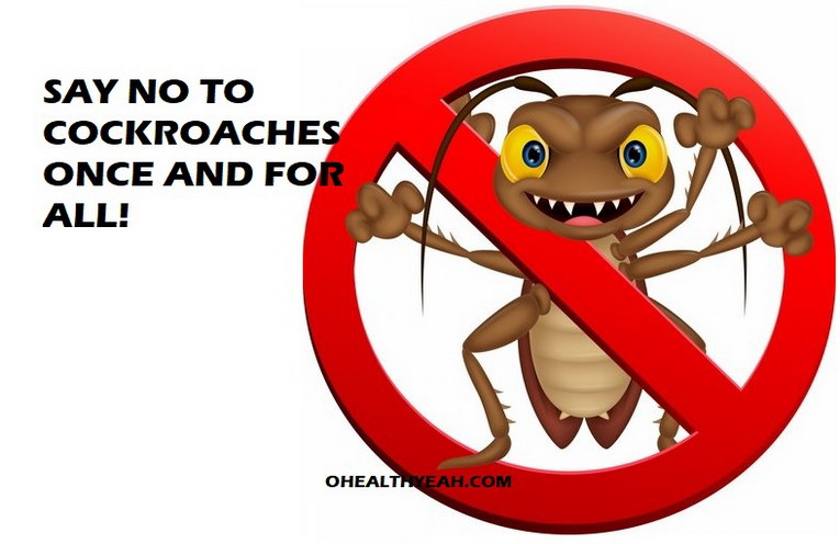 kill cockroaches at home